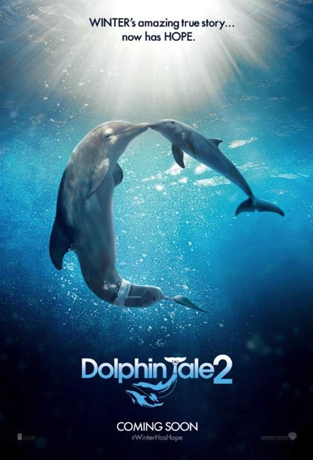 Dolphin Tale 2_2636959488_Dolphin Tale 2 (2014)